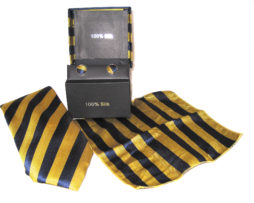 gold blue stripe tie gift set